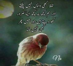 True#NayeemUnissa Urdu Funny Poetry, Poetry Pic, Iqbal Poetry, Urdu Poetry Romantic, Love Poetry Urdu, Libra Quotes, Poetry Quotes, Hindi Quotes, Qoutes