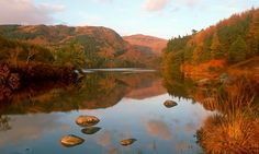 Looking across Loch Trool in the Galloway Forest Park