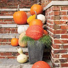 Simple Fall display