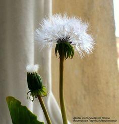 КЕРАМИЧЕСКАЯ ФЛОРИСТИКА цветы из глины Обучение