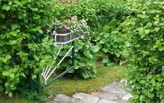 Tämä vihreä-valkoinen portti maastoutuu tyylikkäästi vehreyden keskelle.