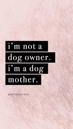 I'm not a dog owner. I'm a dog mother. Check out our free hd dog quote wallpapers for mobile right here - new designs added regularly ; Dog Quotes Love, Dog Lover Quotes, Dog Quotes Funny, Cat Quotes, Animal Quotes, Qoutes, Quotes Wallpaper For Mobile, Dog Wallpaper, Wallpaper Backgrounds