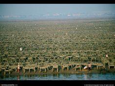 Endroits dans le monde - Fonds d'écran et Wallpapers gratuits: http://wallpapic.be/national-geographic-photos/endroits-dans-le-monde/wallpaper-38128