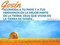 Aún en tiempos de crisis y de escasez, el Señor te dice: Ven a mi Gosén, he preparado lo mejor de la tierra para ti!