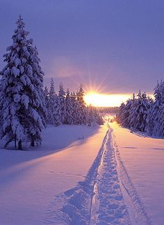 ˚Snow Sunset - Vancouver, Canada