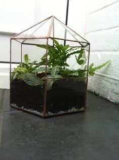 Large Glass Hexagon Terrarium, Glass Container, Indoor Gardening, Wedding  Decoration, Geometric Terrarium, Indoor Planter, Taxidermy Case