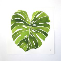 25+ best ideas about Plant painting on Pinterest | Flora, Ficus ...