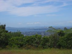 The view from Mt Pukematekeo - Swanson Scenic Drive.