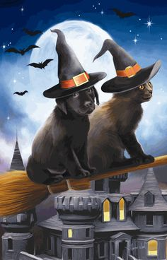 Have Broom will Travel 1000 pc Jigsaw Puzzle USA Sunsout Halloween Black Cat Dog Halloween Prints, Dog Halloween, Halloween Pictures, Spirit Halloween, Holidays Halloween, Halloween Themes, Vintage Halloween, Happy Halloween, Halloween Witches