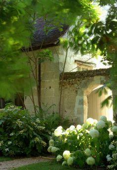 French courtyard garden