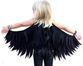 Black Raven Wings