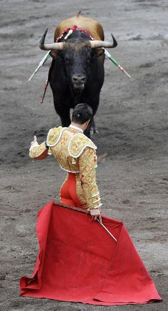 Bull Matador Jose Maria Manzanares II… Not that I'm de acuerdo w/ this violent sport but nevertheless it is a part of our cultura… a negative part, but a part nonetheless…