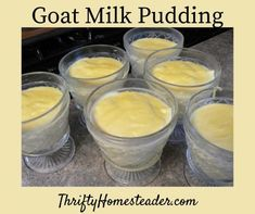 Goat Milk Pudding - The Thrifty Homesteader Lots associated with the recipes listed here had Milk Pudding Recipe, Pudding Recipes, Goat Milk Fudge Recipe, Fudge Recipes, Goat Milk Recipes, Goat Cheese Recipes, Milk Dessert, Milk And Eggs, Healthy Foods To Eat