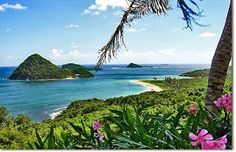 Grenada Island Paradise Island Of Caribbean, West Indies
