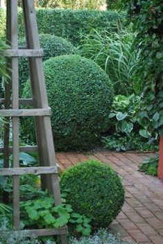 englischer garten Topiary balls- Oh my! What is the secret to trimming topiaries this perfectly Boxwood Garden, Topiary Garden, Boxwood Topiary, Formal Gardens, Outdoor Gardens, Modern Gardens, Japanese Gardens, Landscape Design, Garden Design
