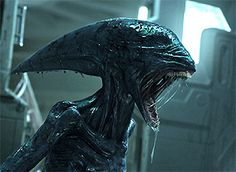 So What's Going on with Alien 5 and the Prometheus Sequel? - ComingSoon.net