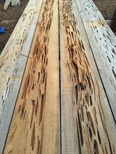 Pecky Cypress Slab The Dogtrot Pinterest