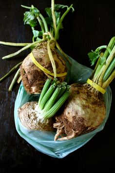 Celery Root or Mandrake? Great recipe for the ugly yet always delicious root vegetable.