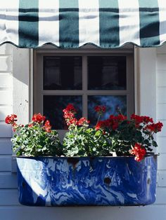 We love the look of this blue splatterware with red geraniums! More Fourth-friendly decor here: http://www.bhg.com/holidays/july-4th/decorating/fourth-of-july-patriotic-decorating-ideas/?socsrc=bhgpin061414gardenspirit&page=20