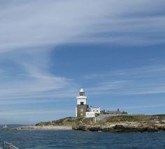 Coquet Island - Northumberland Coast