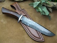 bearing and gidgee bowie