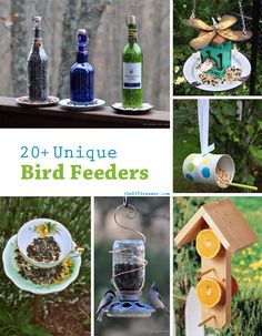 I'm sure I'v pinned somthing like this before, however you can never have too much Unique Bird Feeders! A fabulous collection of unique bird feeders. A great way to keep the birds around your home very happy. Unique Bird Feeders, Diy Bird Feeder, Outdoor Projects, Diy Projects, Plantation, Ana White, Garden Crafts, Beautiful Birds, Bird Houses