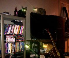 Intruder alert. Fire up the lasers.