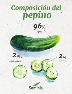 El pepino es una #fruta muy #fresca que está principalmente compuesta por #agua.
