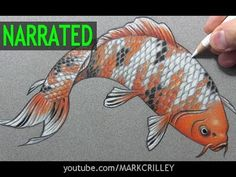"▶ Relaxing exercise with an amazing outcome. How to Draw a Fish (""Koi""): Narrated Step-by-Step - YouTube"