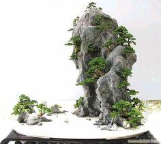 Ferns Garden, Moss Garden, Bonsai Garden, Garden Planters, Asian Landscape, Japanese Landscape, Landscape Rocks, Bonsai Tree Care, Bonsai Art