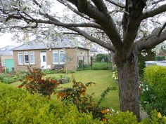 Our new home in Edinburgh, the East side near the beach. A 1950's detached bungalow.