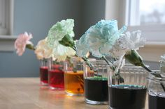 I am on this!!!  previous pinner wrote: tradition for st pat's day I did this as a kid dye a carnation green simple fun and it's a great for kids to learn how plants get their nutrients.