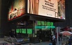 Olive Garden Time Square