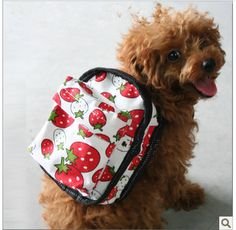 Berry backpack, i want one for my Kiwi...