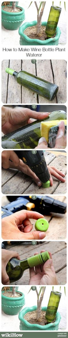 How to Make Wine Bottle Plant Waterer, from wikiHow.com This may be great for vacations