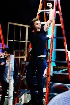 Harry on a latter is never a good idea Niall Horan, Zayn, Harry Styles Edits, Harry Styles Pictures, Harry Edward Styles, 1d Day, Harry Birthday, He Makes Me Happy, Irish Boys