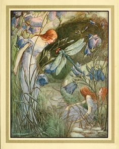 1913- Frank Pape Cheyne dragonfly with fairy