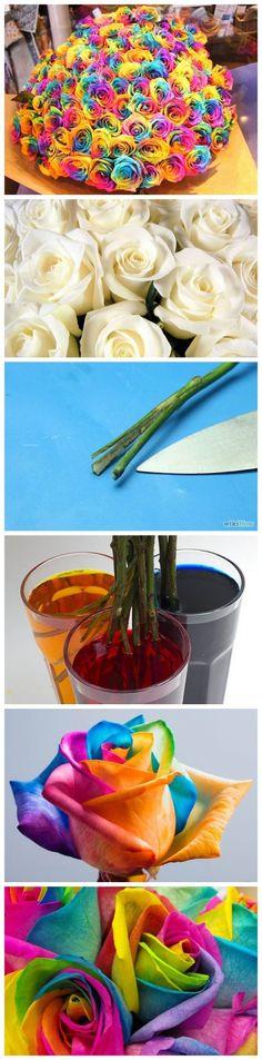 How To Make Colorful Rainbow Roses | Como hacer rosas de arcoiris