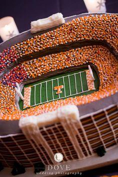 Stadium groomsmen cake!! <3