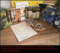 Owl Unit for Jk - Last week we had a wonderful time learning about owls ! Most of the activities were great for my 4 year old a. Owl Babies, Baby Owls, Owl Activities, Owl School, Owl Classroom, Thematic Units, Reading Centers, School Themes, 4 Year Olds