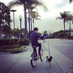 This is just great!! @jamesmaslow and Fox - @kendizzzzle- #webstagram