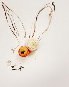 Creative Flower Shoots by Kari Herer   Cuded
