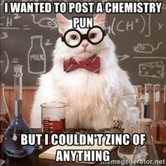 Chemistry Cat - I wanted to post a chemistry pun But I couldn't zinc of anything