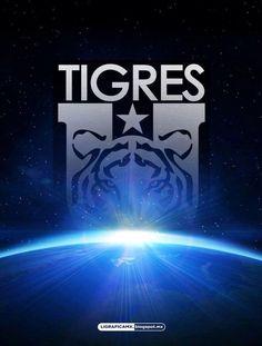 El Universo Tigre