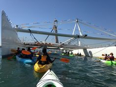 Kayaking Tours In Newport Beach