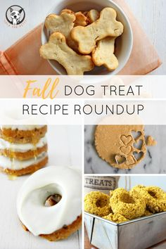 Best Treats For Dogs In 2018 - The best treats for dogs should include protein, but avoid artificial flavors, extra salt, and sugar. Your dog is an integral part of the family, so he deserves a treat… Best Treats For Dogs, Diy Dog Treats, Healthy Dog Treats, Puppy Treats, Puppy Food, Dog Biscuit Recipes, Dog Treat Recipes, Dog Food Recipes, Homemade Dog Cookies