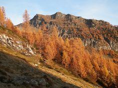Tanèda Switzerland, Grand Canyon, Hiking, Nature, Travel, Goals, Walks, Naturaleza, Viajes