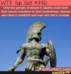 Wtf fun fact #4461
