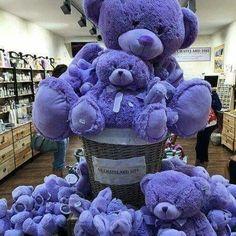 Precious Purple Bears