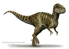 """Name:  Siamotyrannus (Greek for """"Siamese tyrant""""); pronounced SIGH-ah-mo-tih-RAN-us Habitat:  Woodlands of southeast Asia Historical Period:  Early-Middle Cretaceous (125-100 million years ago) Size and Weight:  About 20 feet long and 1,000-2,000 pounds Diet:  Meat Distinguishing Characteristics:  Large size; small arms; bipedal posture"""